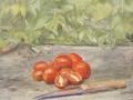 """""""Stillleben Tomaten"""" 201834,5 x 39 cm, Öl auf Holz"""